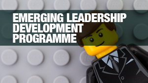Join the Emerging Leadership Development Programme at Regenesys Business School